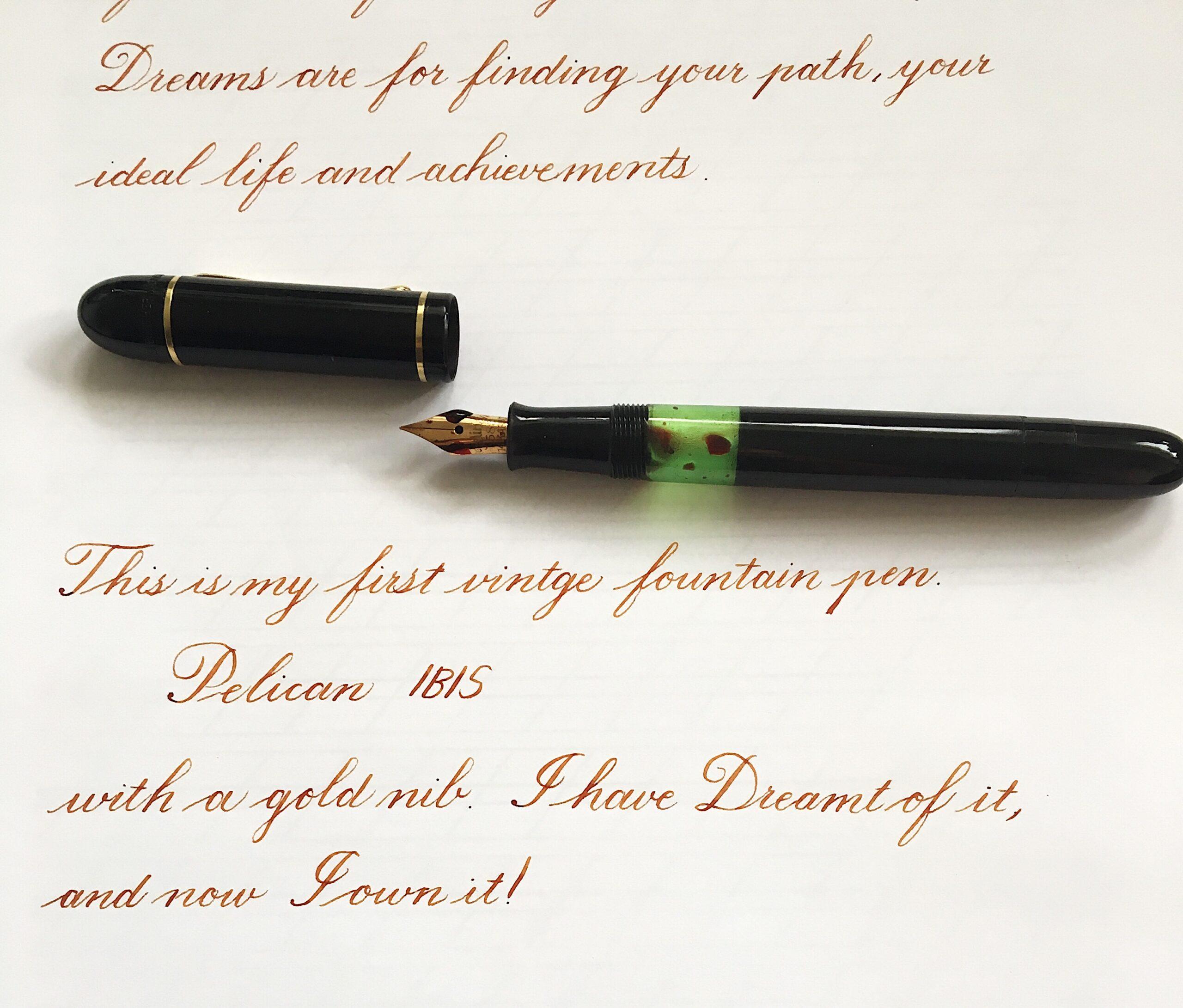 A vintage fountain pen with a 14k gold nib: The Pelikan IBIS